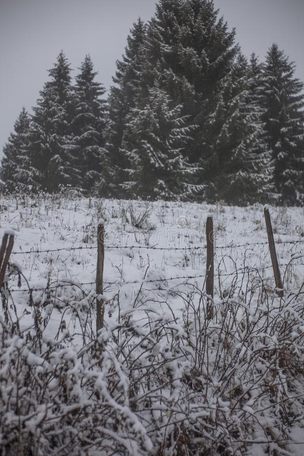 Grass Field Cover by Snow royalty free stock photo