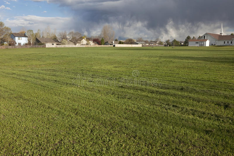 Download Grass field freshly mowed stock image. Image of pattern - 17622487