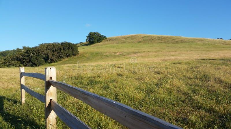 Grass field and Mountain stock photos