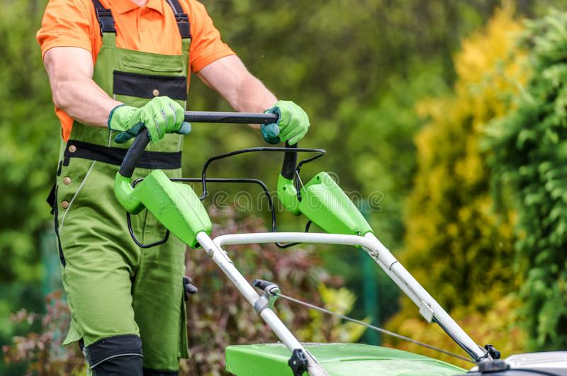 Grass Field Mowing royalty free stock photography