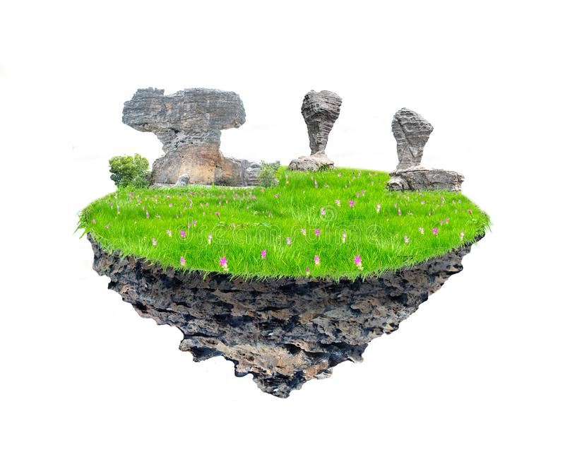 Grass fields, beautiful rocks in the middle of the Krachiew flower on the rock on a floating island on a white background royalty free stock images