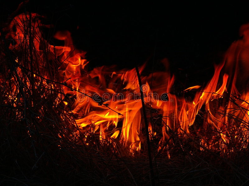 Grass in Flames. Red flames on the black background coming from burning dry grass stock photography