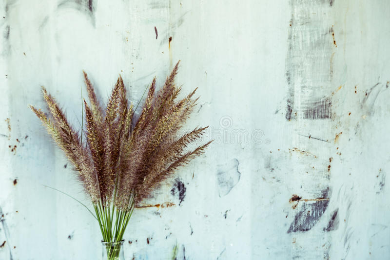 Grass flower on bottle and metal wall stock photo