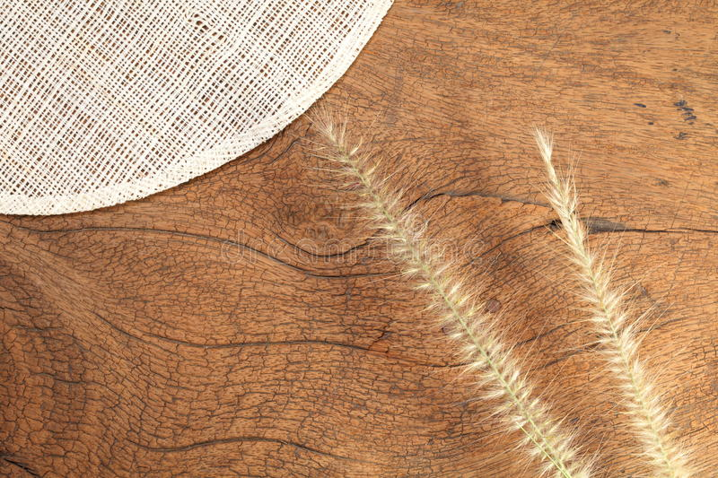 Grass flower on hard wood. Close up photo of mature grass flower putting on the dark brown color hard wood and platemat in the scene represent the detail of royalty free stock photography