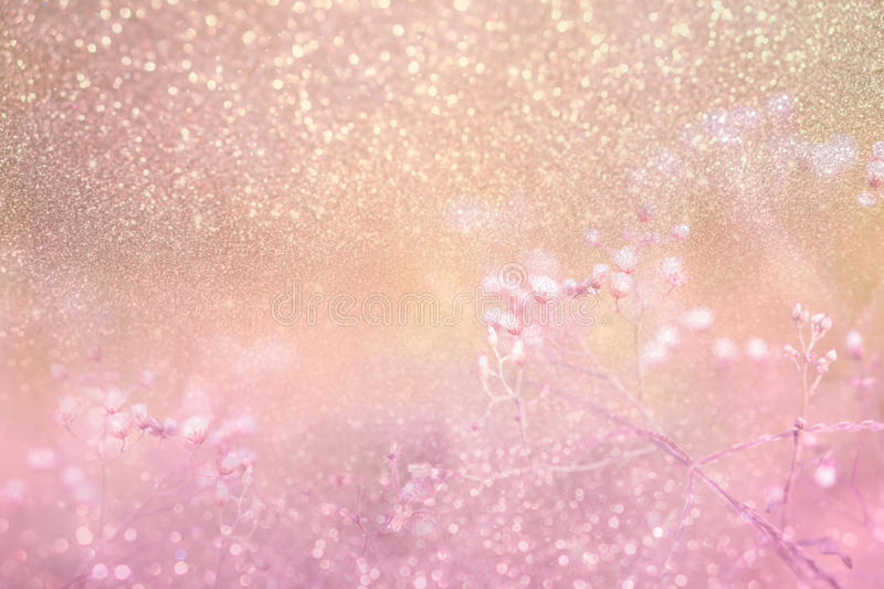 Grass flower on pink golden glitter in vintage background royalty free stock photos