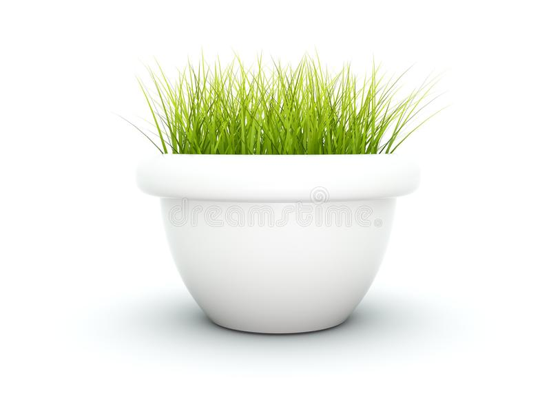 Grass in the flowerpot. Isolated on white vector illustration