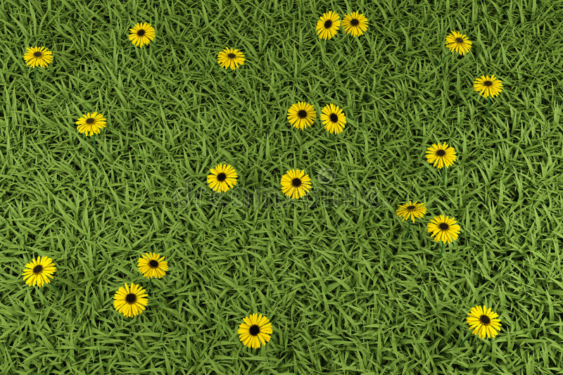 Grass And Flowers Royalty Free Stock Photography