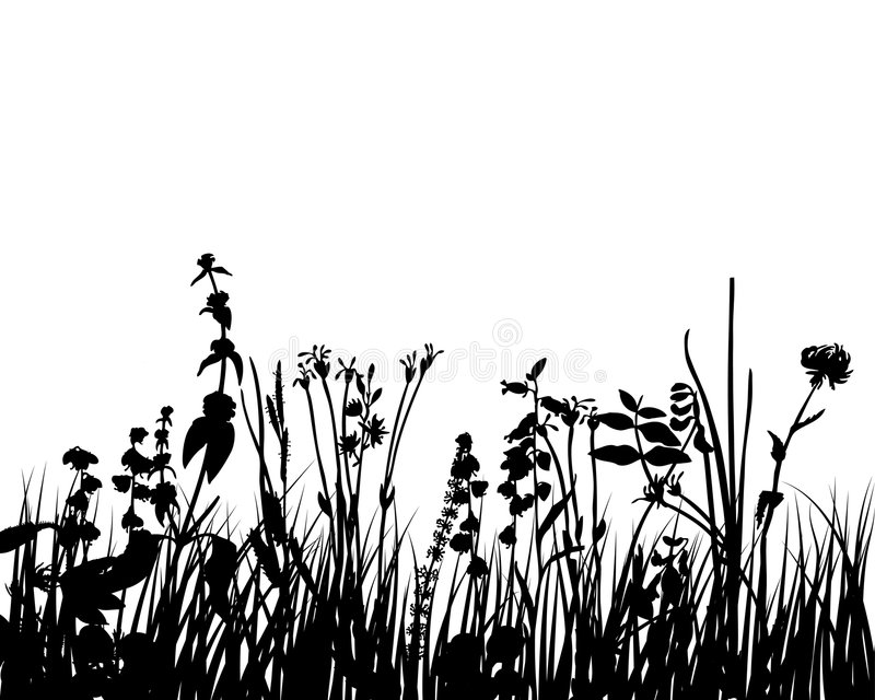 Grass and flowers stock illustration