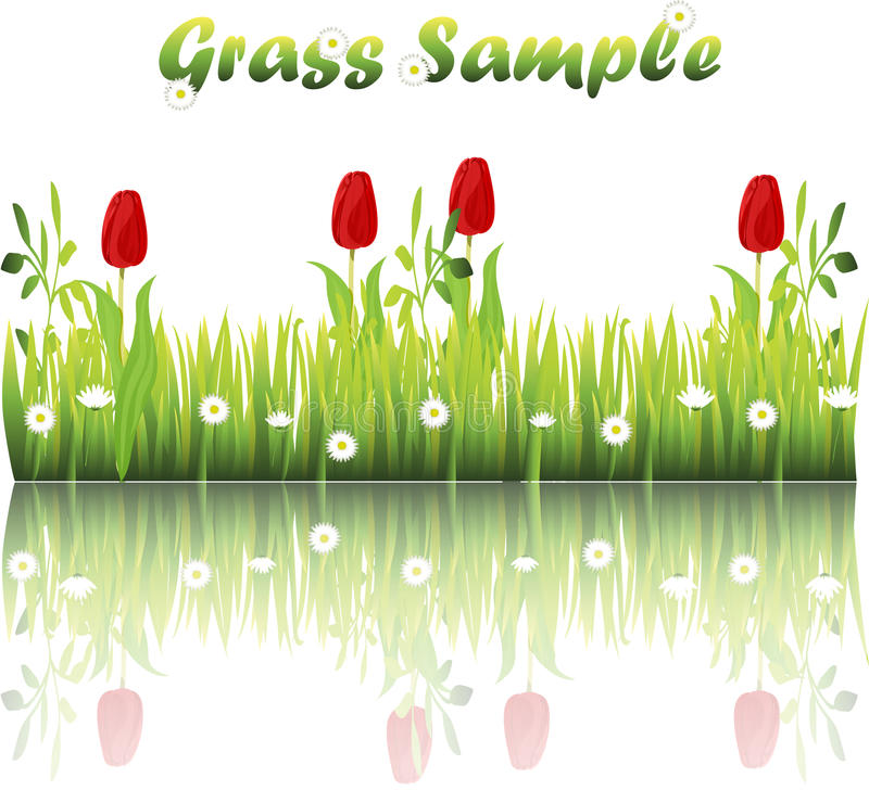 Grass with flowers. Very high quality original trendy illustration of grass with flowers, chamomile, tulip vector illustration