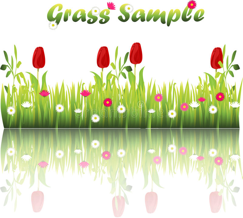 Grass with flowers. Very high quality original trendy illustration of grass with flowers, chamomile, tulip stock illustration