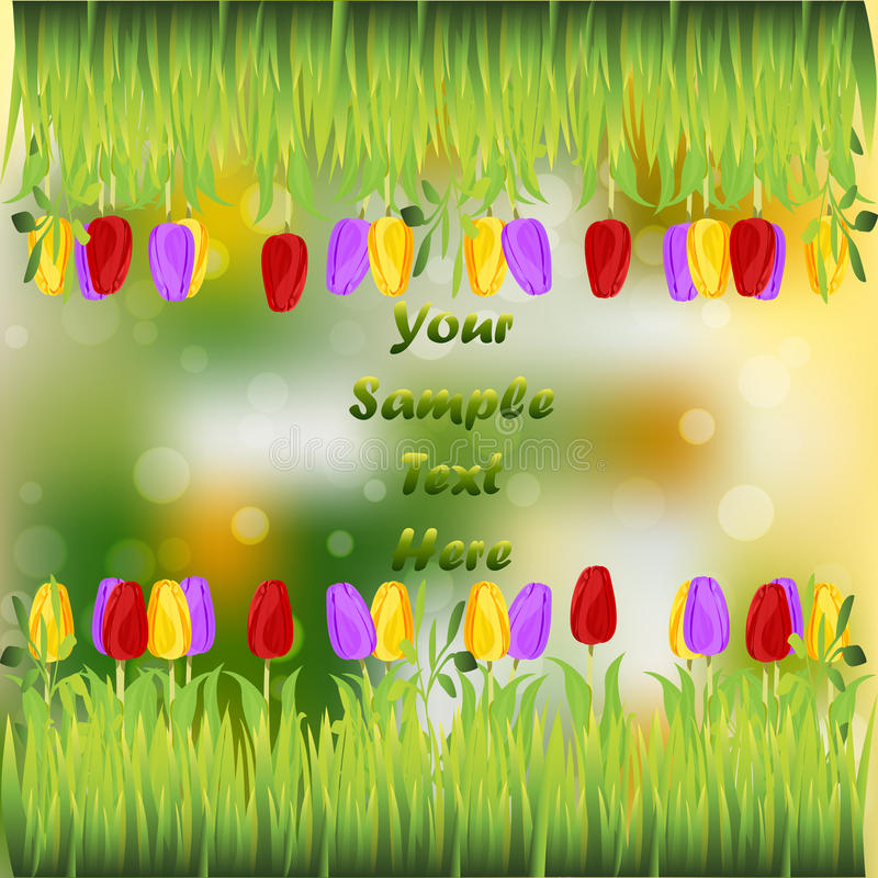 Grass with flowers. Very high quality original trendy illustration of grass with flowers, tulip frame for text or card stock illustration