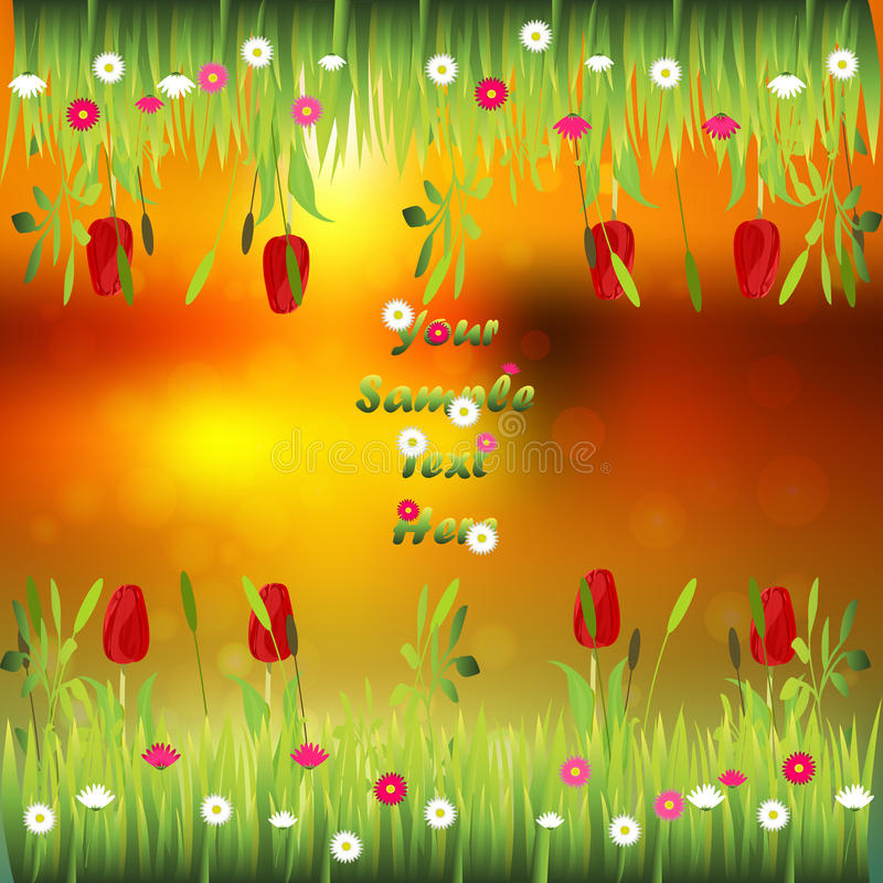 Grass with flowers. Very high quality original trendy illustration of grass with flowers, tulip frame for text or card on sunset background stock illustration