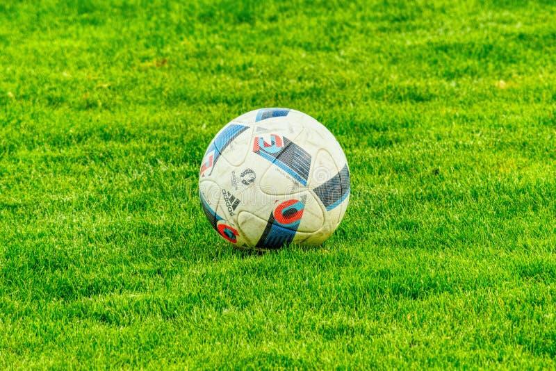 Grass, Football, Green, Ball stock images