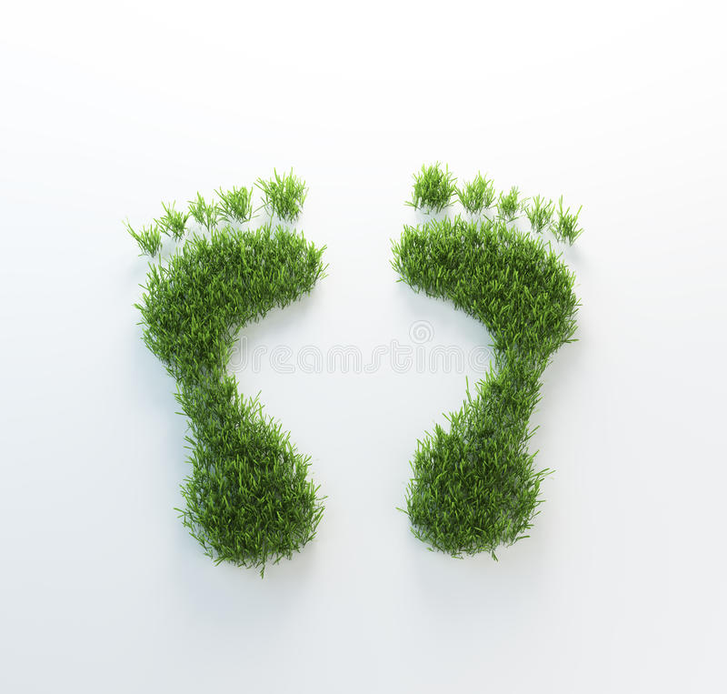 Grass Footrpints Stock Photography