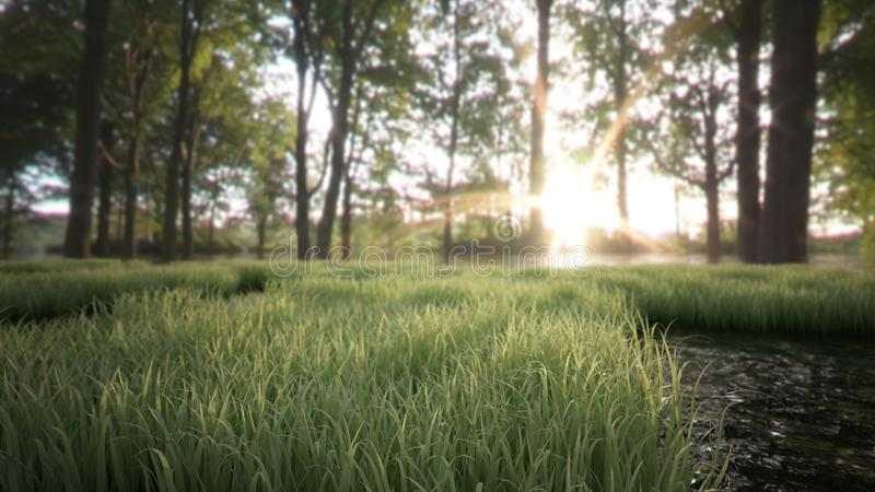 Grass and forest landscape stock illustration