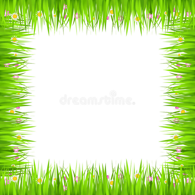 Download Grass Frame stock vector. Illustration of isolated, field - 24824090