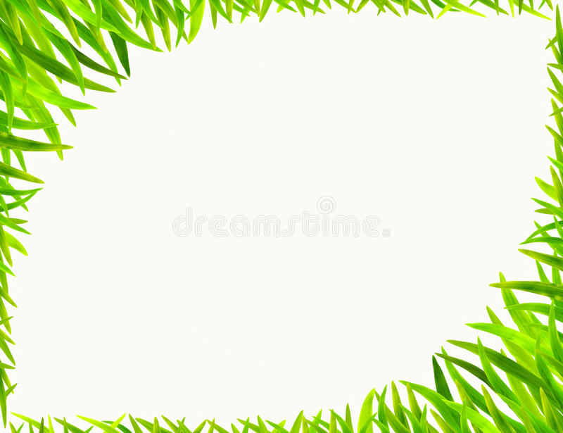 Download Grass frame stock photo. Image of leaf, beautiful, field - 26619490