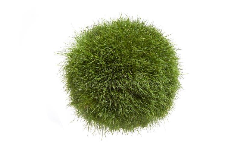 Grass Globe stock photography