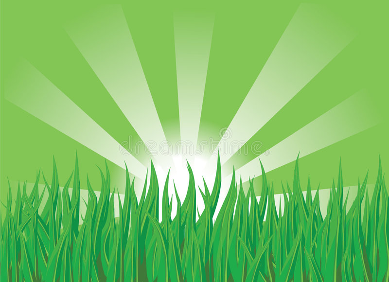 Grass on the green royalty free illustration