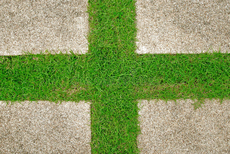 Download Grass green background stock photo. Image of house, architecture - 24046184