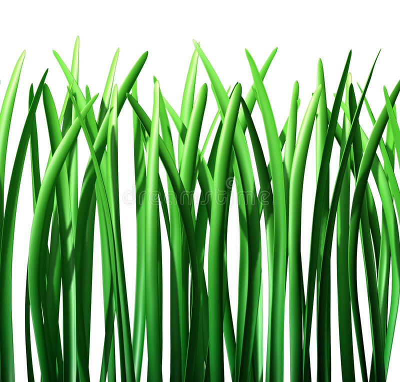 Download Grass green lawn isolated stock illustration. Image of fertilizer - 16075256