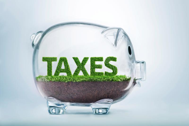 Grass growth taxes concept royalty free stock photography