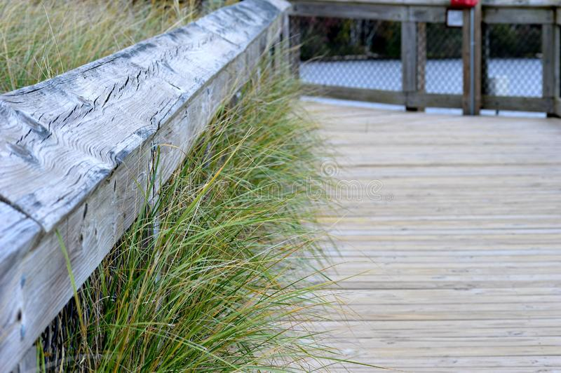 Grass growing throughout the fence. royalty free stock photography