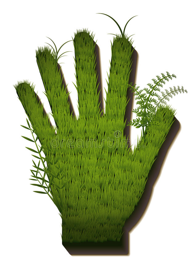 Grass hand stock images
