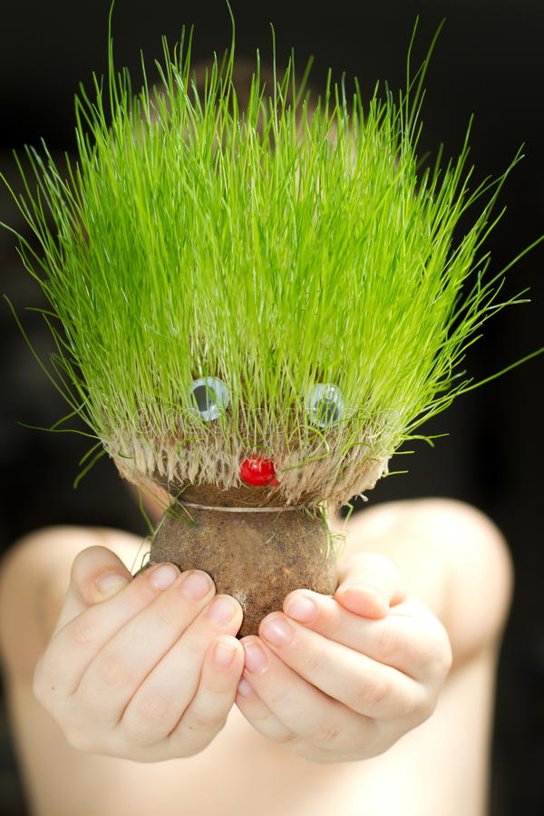 Free Grass Head Toy Royalty Free Stock Photography - 21360787