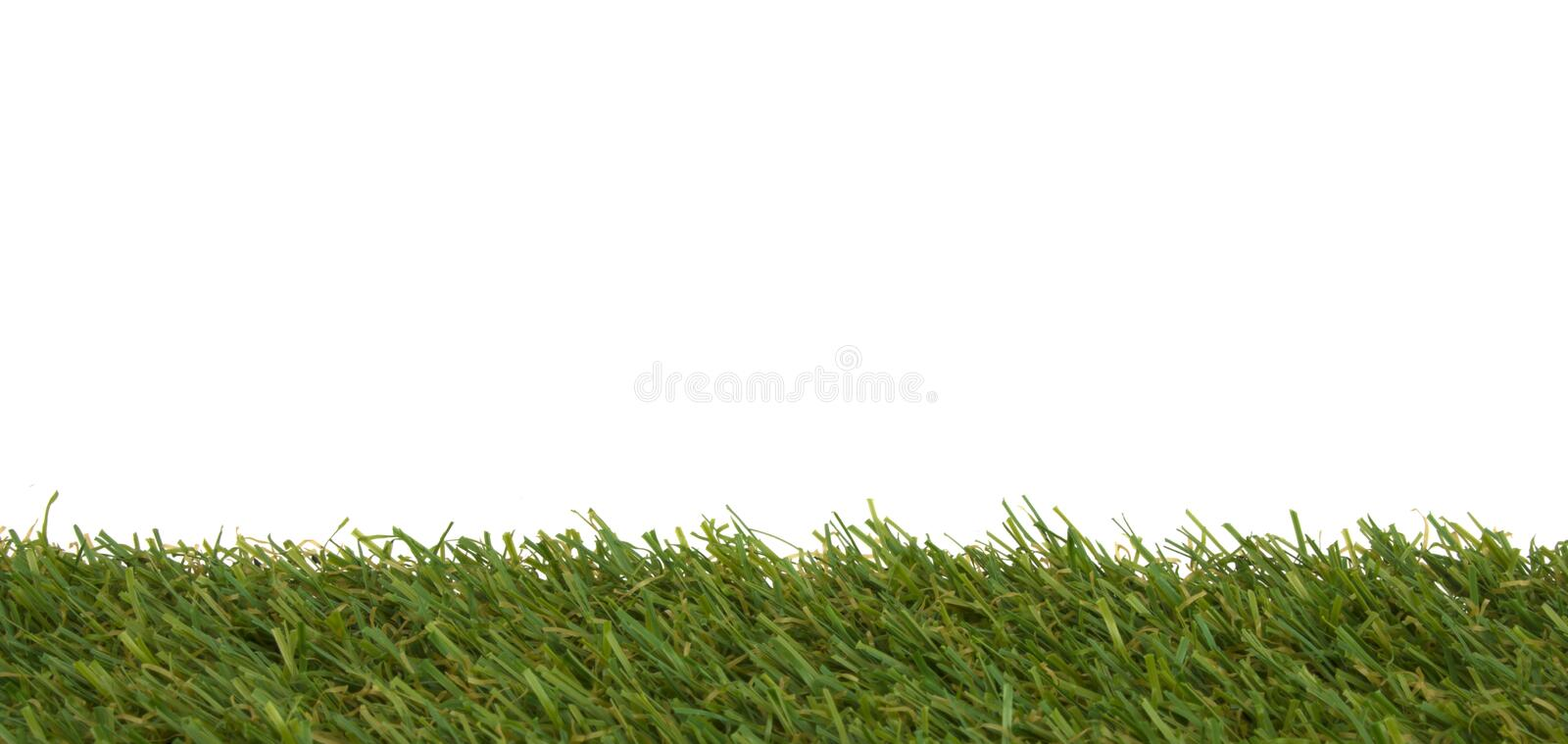 Grass isolated on a white background. Stock Photo stock photos