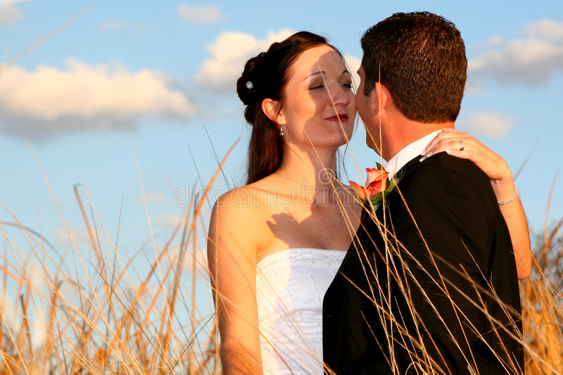 Grass Kiss stock photos
