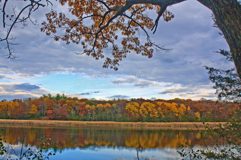 Grass Lake in Fall. Banks of Grass Lake with tree branch framing a blue patch of sky and reflections in the lake; Nashotah Park, Wisconsin royalty free stock image