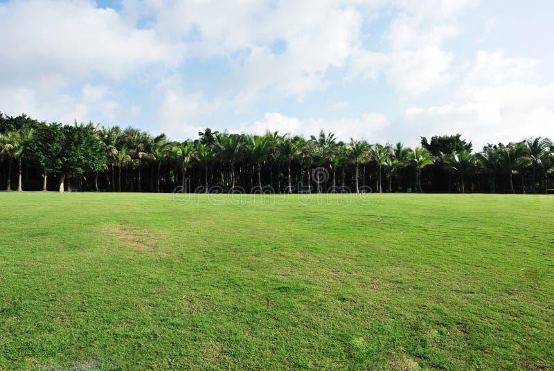 Grass land under sky stock photo