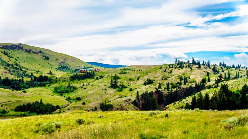Grass Lands of the Nicola Valley in, British Columbia, Canada. Rolling Hills and wide open Grass Lands of the Nicola Valley in the Shuswap, between Merritt and stock image