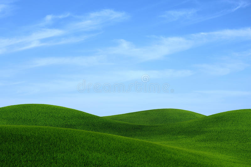 Download Grass Landscape Royalty Free Stock Photography - Image: 27313367