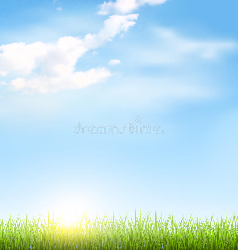 Grass lawn with clouds and sun on blue sky. Green grass lawn with clouds and sun on blue sky vector illustration
