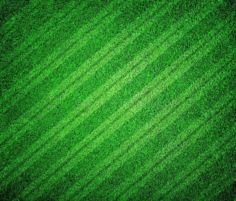 Download Grass Lined Football Or Soccer Field Stock Photo - Image of soccer, abstract: 39513156