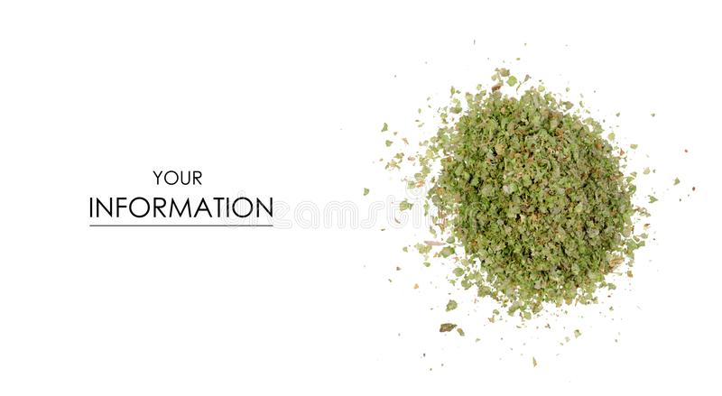 Grass marjoram spice pattern. On white background isolation royalty free stock images