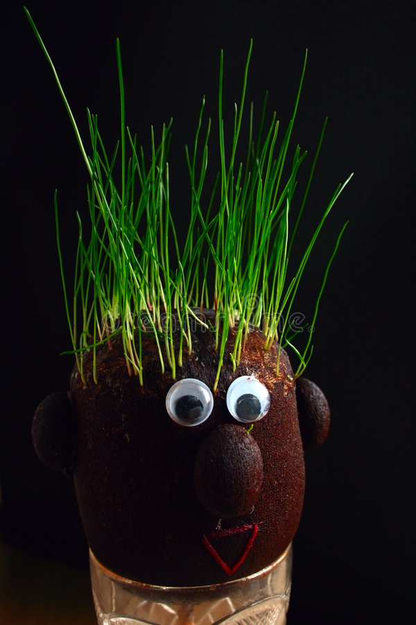 Free Grass On The Head Stock Images - 4575304