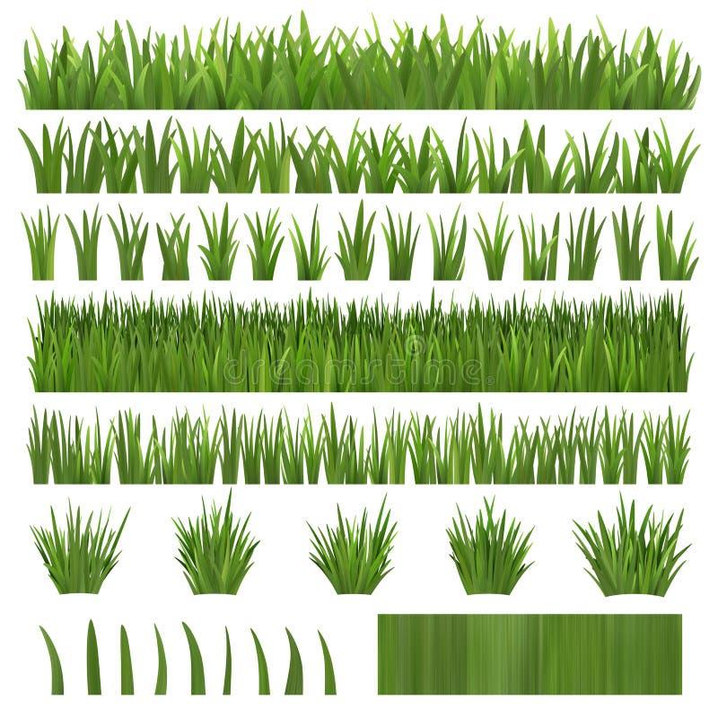 Grass Over White Stock Photos