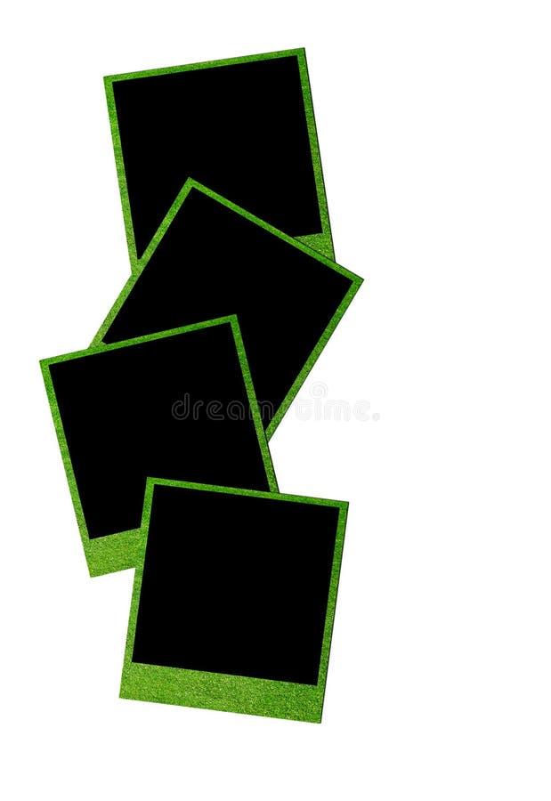 Grass Photo Frames Stock Image