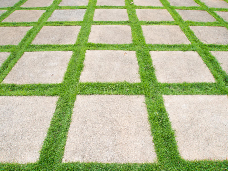 Download Grass road stock photo. Image of follow, natural, park - 28993938