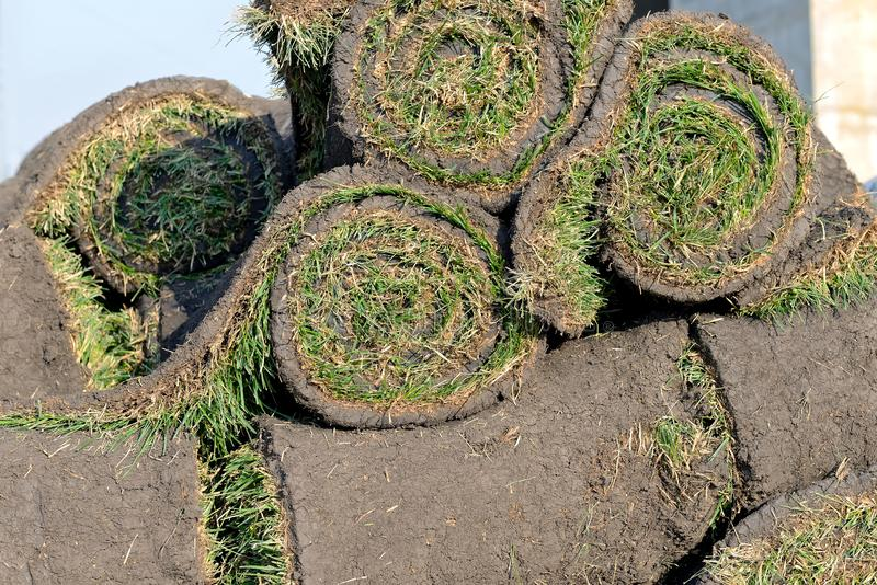 Grass rolls are piled in careless stacks, sod rolls. Close up royalty free stock image