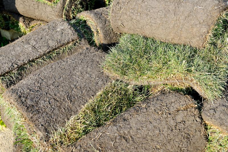 Grass rolls are piled in careless stacks, sod rolls. Close up royalty free stock photos