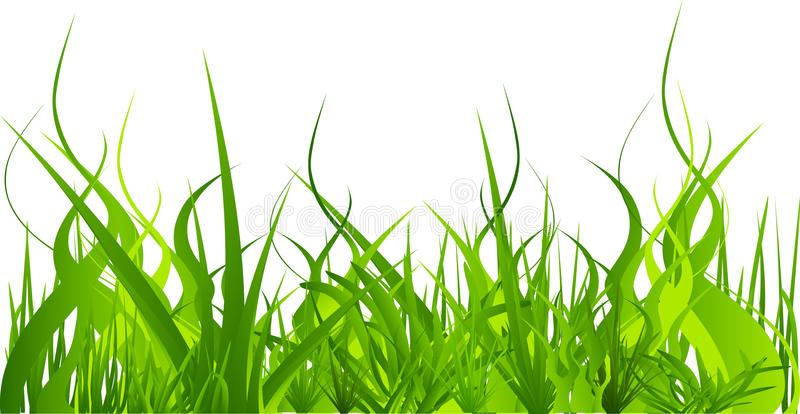 Download Grass set stock vector. Image of band, landscape, green - 12564450