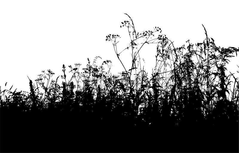 Grass silhouette vector illustration