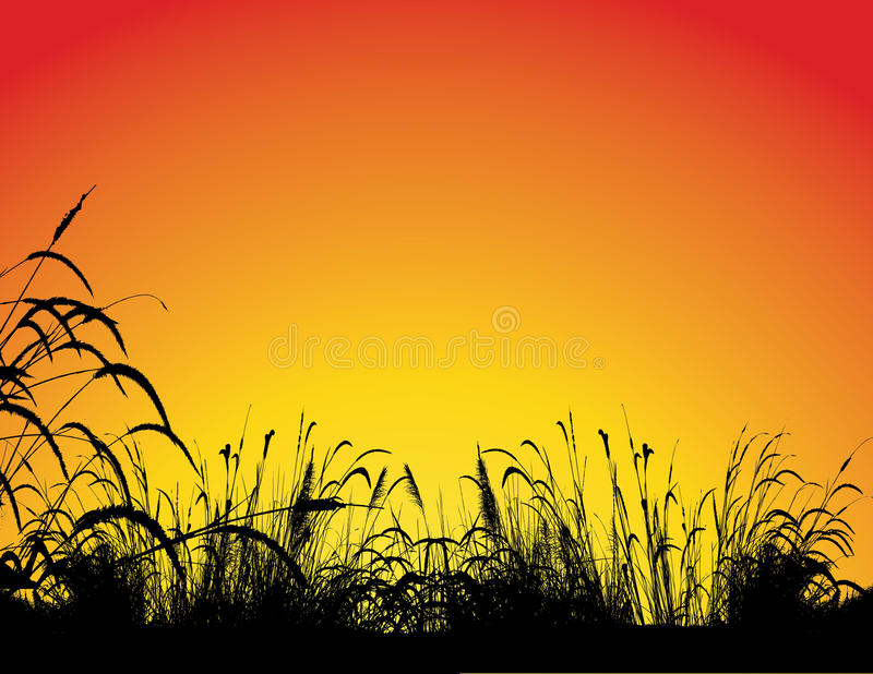 Grass silhouette background royalty free illustration