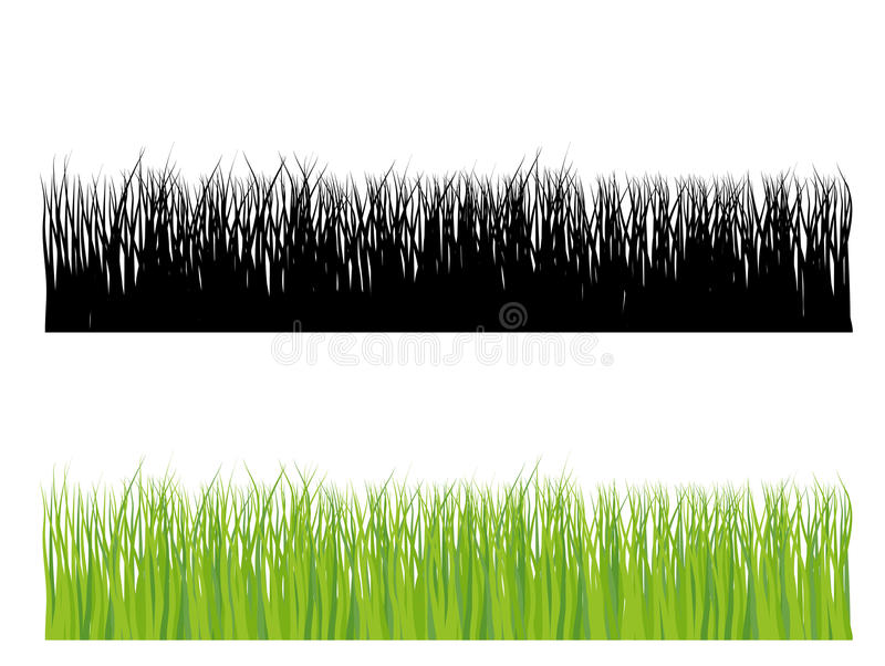 Grass silhouette in color and black vector illustration