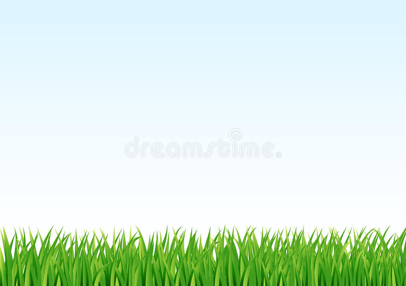 Grass and sky background vector illustration