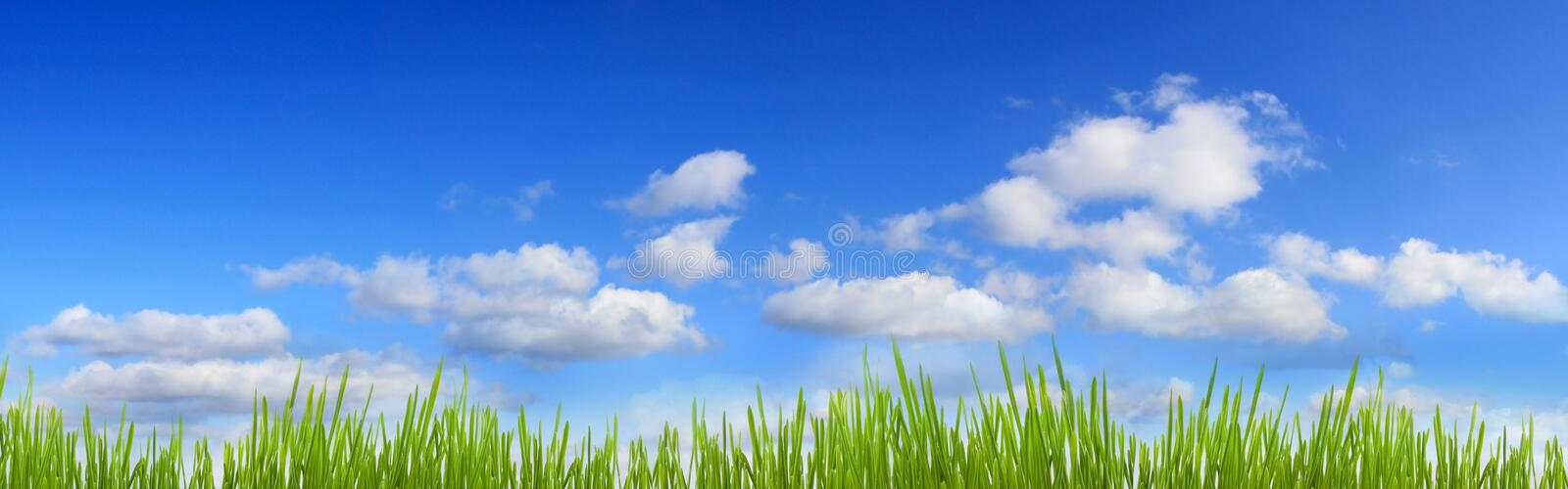 Grass And Sky Banner Royalty Free Stock Photo